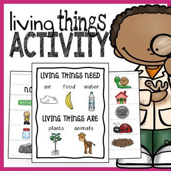 living and nonliving things sorting activity and poster science ideas living nonliving. Black Bedroom Furniture Sets. Home Design Ideas