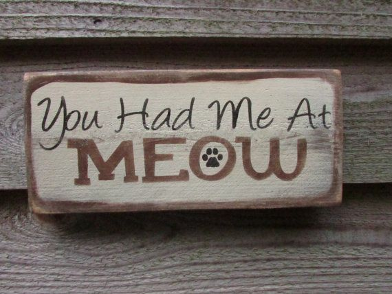 You had me at meow cat sign cat lovers. cat pet lovers | Etsy