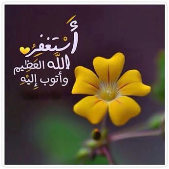 Google Allah Forgiveness Islam Marriage