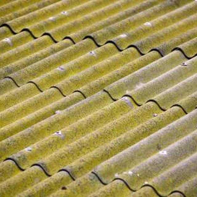 Raised Garden Beds Diy Vegetables Veggies In 2020 Corrugated Metal Roof Metal Roof Corrugated Plastic Roofing