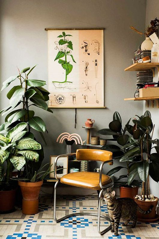 I love everything about this. Lovely European Interior Design. | Eclectic   | Pinterest | Houseplants, Designers and Interiors