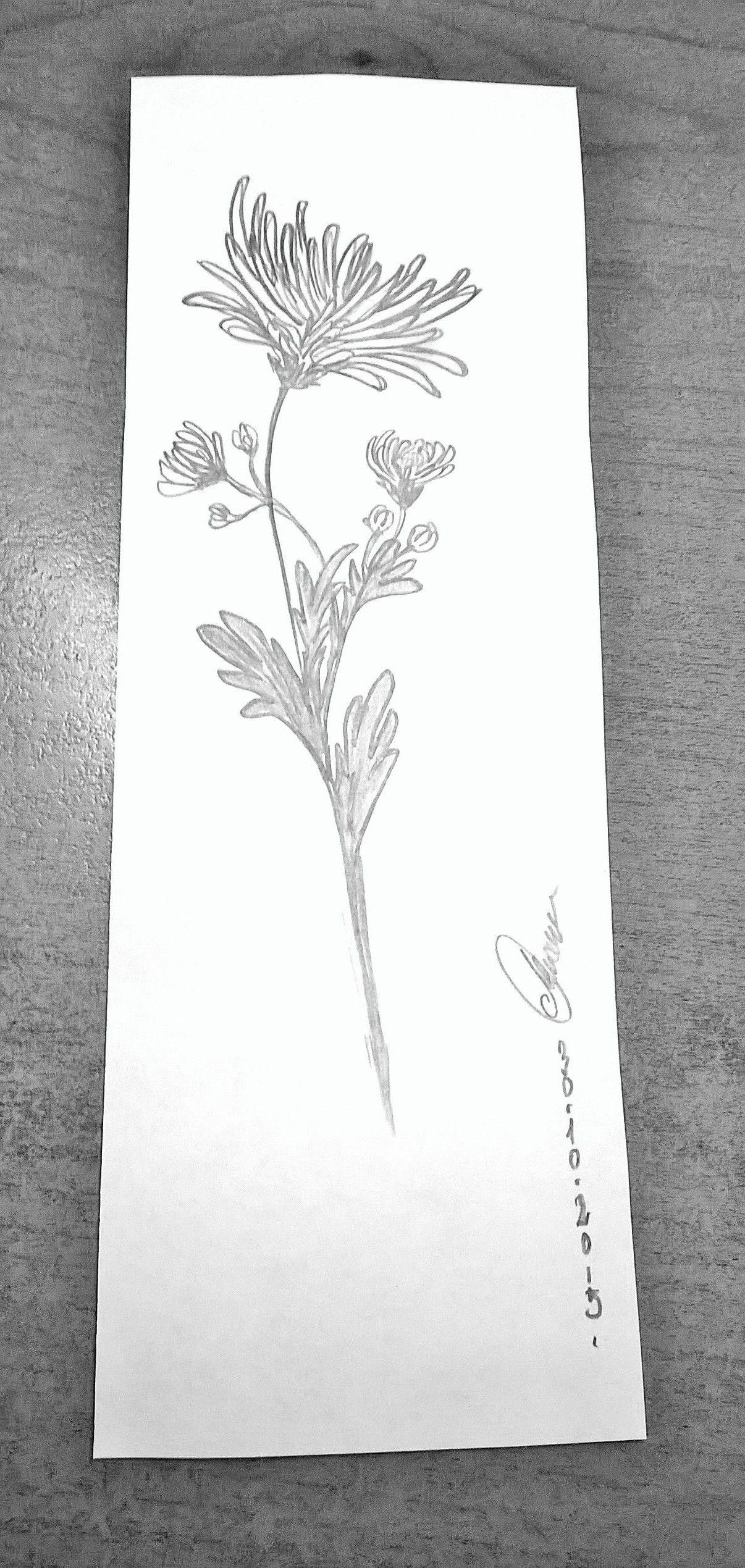 Chrysanthemum Chrysanthemum tattoo, Mum tattoo, Birth