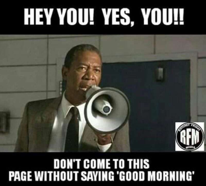 Pin By Alan Oneal On Good Morning Quotes Good Morning Meme Good Morning Quotes Just For Laughs