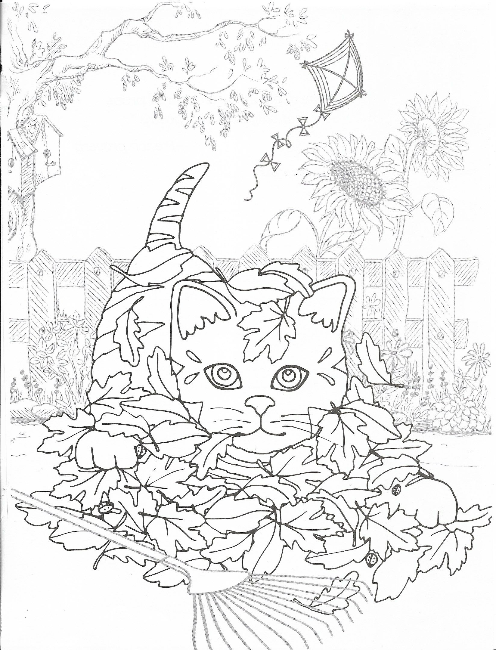 pin by wanda twellman on just cats coloring 2 coloriage. Black Bedroom Furniture Sets. Home Design Ideas