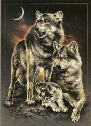 Wolf Family Wolf Pack Tattoo Wolf Painting Wolf Love