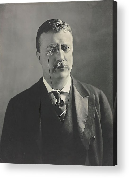 Theodore Roosevelt United States President 1902 Acrylic Print By Dk Digital Acrylic Prints Antique Portraits Canvas Prints