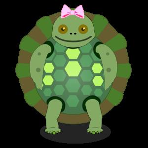 Female TurtleTot