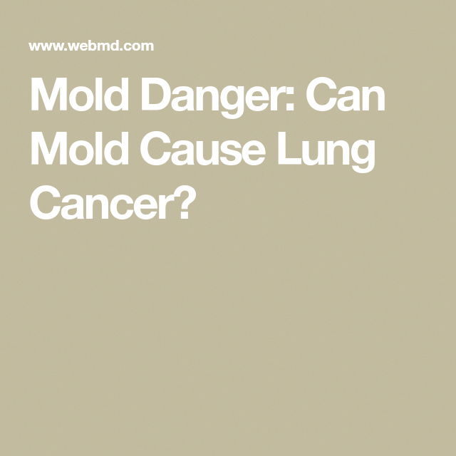 Mold Danger Can Cause Lung Cancer