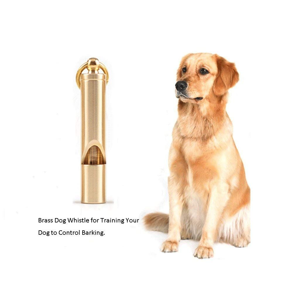 Gaox H Dog Whistle To Stop Barking Mini Retro Pet Whistle Brass