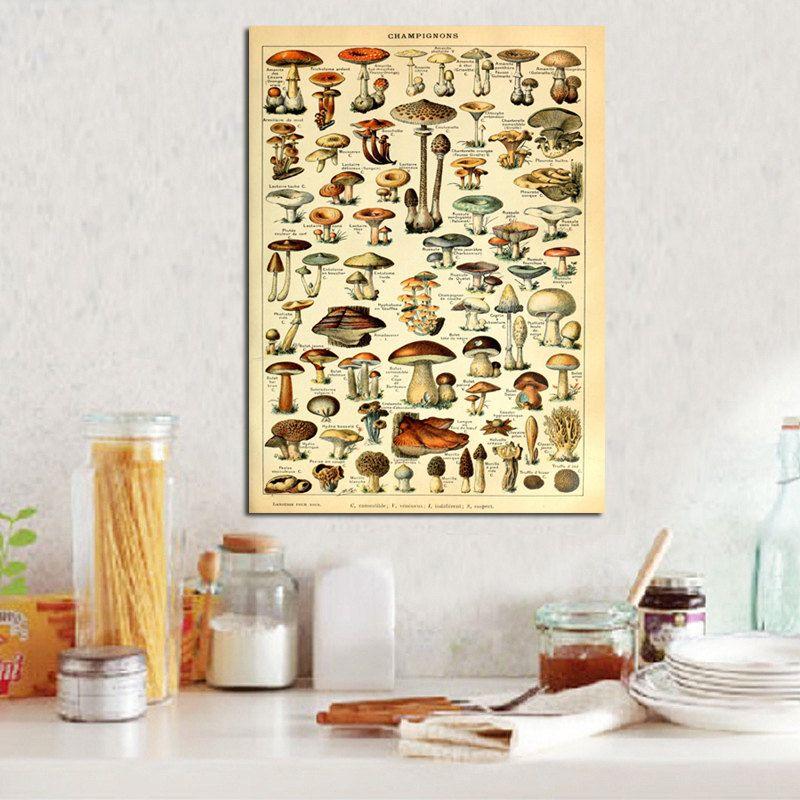 Mushroom print botanical print champignons vintage antique nature ...