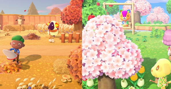 This Is A Guide To All The Seasons And Seasonal Materials In Animal Crossing New Horizons Acnh Animal Crossing Cherry Blossom Petals Cherry Blossom Season