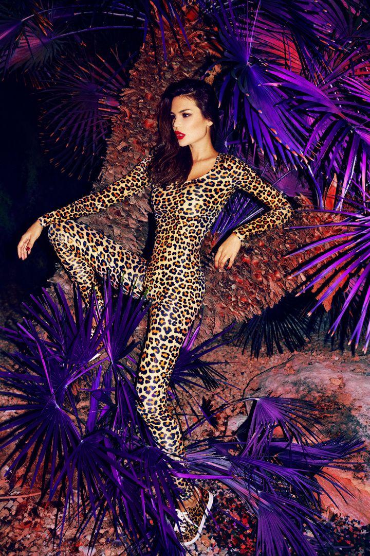 Kate wild cat - alexeibazdarev
