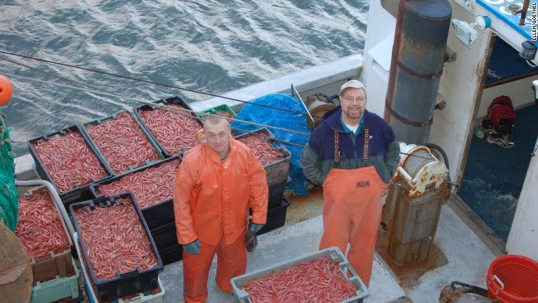 No shrimp today: Maine's waters are warming and it's costing fishermen money