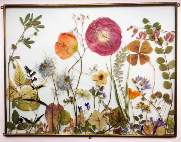 Blumenkunst, die wild macht (enthusiastisch)
