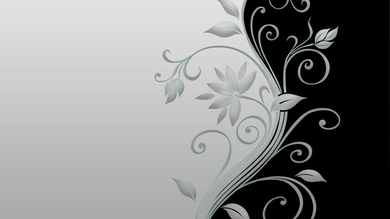 Taustakuvat kukka, musta, minimaalinen, kukka, harmaa, minimalismi, Valokuva