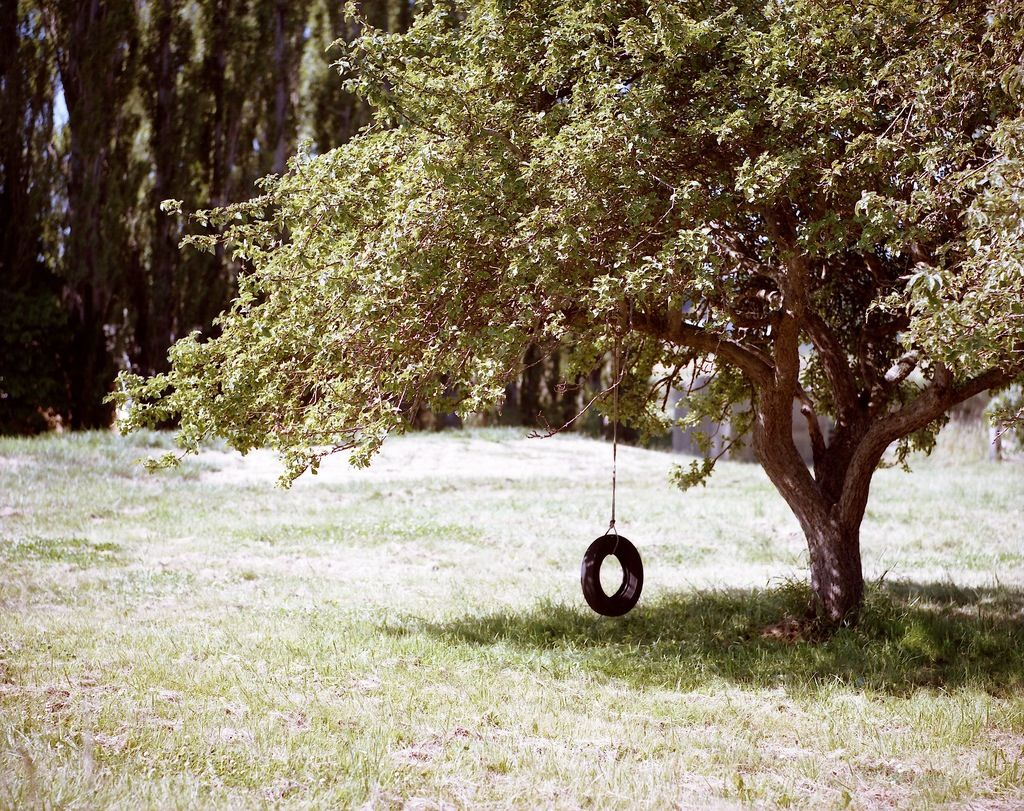 tire tree swing | autobanden | Pinterest | Swings