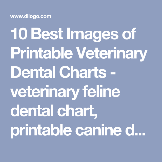 10 Best Images Of Printable Veterinary Dental Charts Feline Chart Canine And