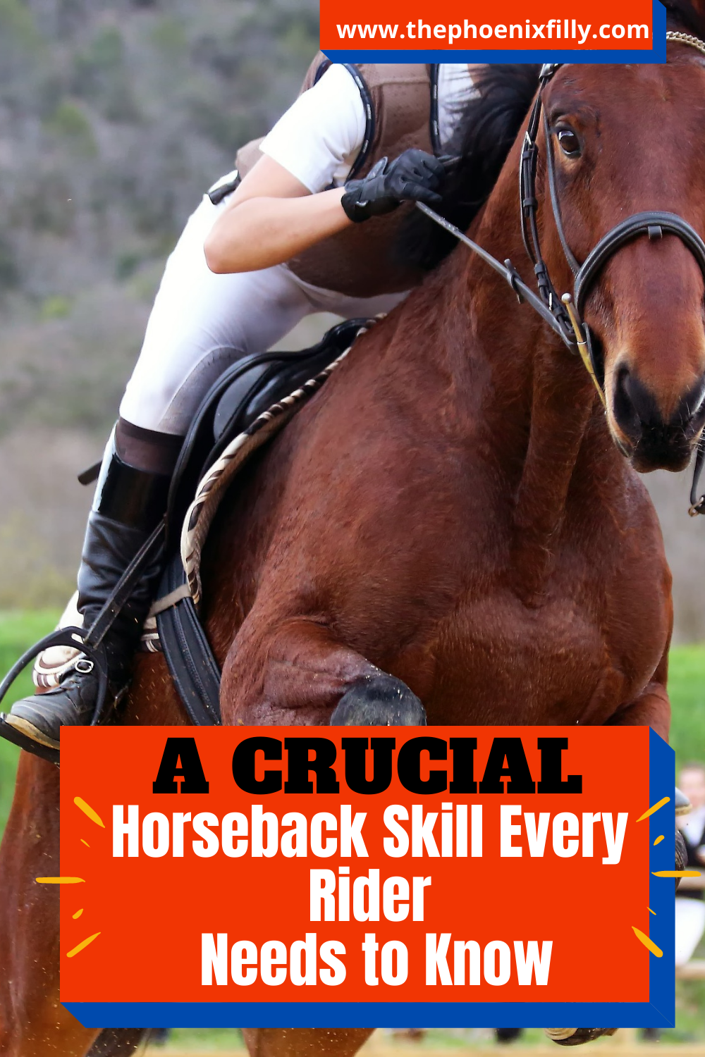The Most Crucial Riding Skill Horse Lessons Equestrian Blog Riding