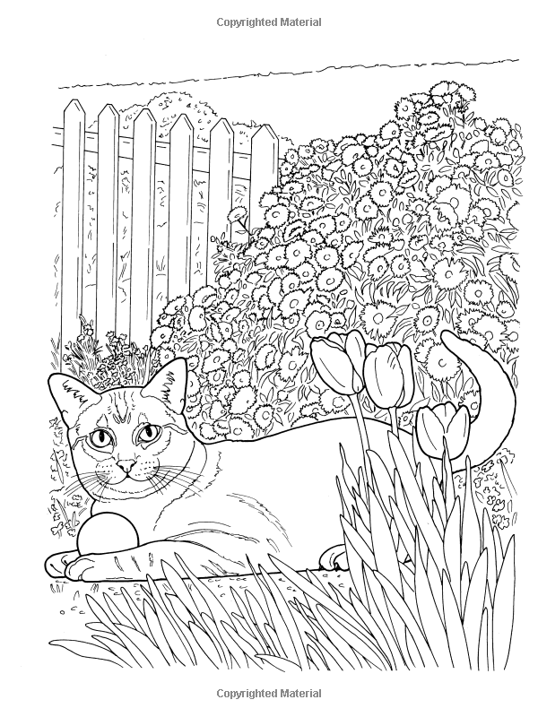 Amazon Com Creative Haven Lovable Cats And Dogs Coloring Book Adult Coloring 9780486804453 Dog Coloring Book Creative Haven Coloring Books Coloring Books