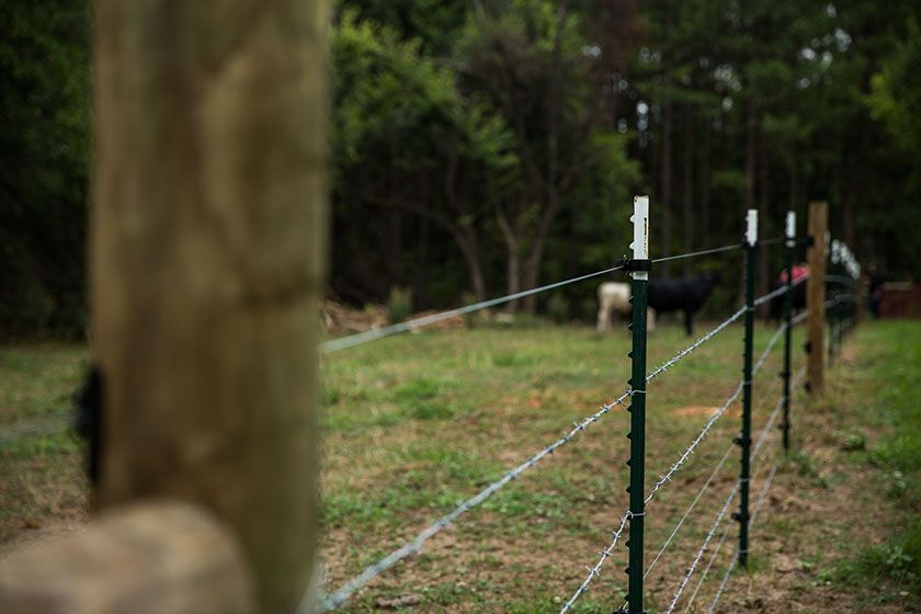 Electric Woven High Tensile Amp Barbed Wire Fence In