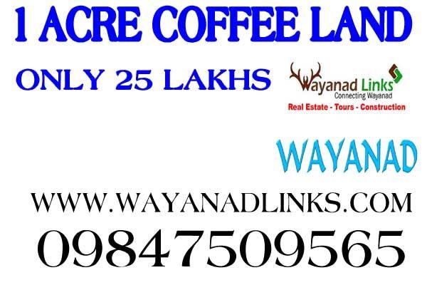 www.wayanadlinks.com
