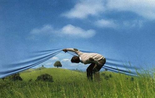 Reality Versus Imagination and Illusion | Illusions, Trompe l'oeil, Nature  pictures