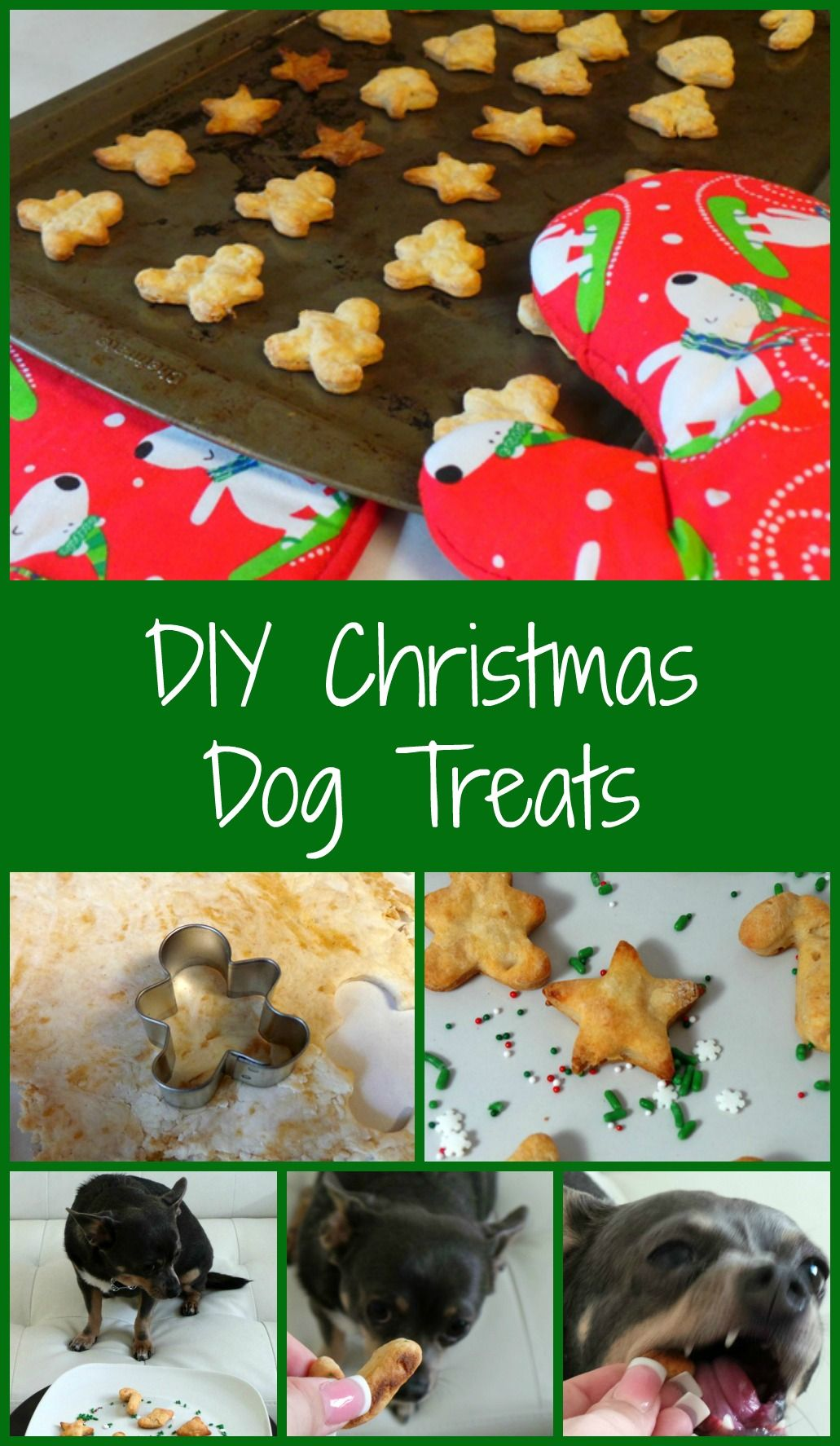 Diy Christmas Dog Treats Diy Dog Projects Pinterest Diy