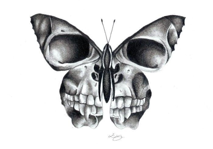 Photo of crâne de papillon Impression artistique par erzaguri