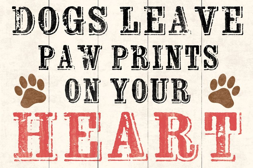 Dogs leave paw prints on your heart beallsflorida Paw