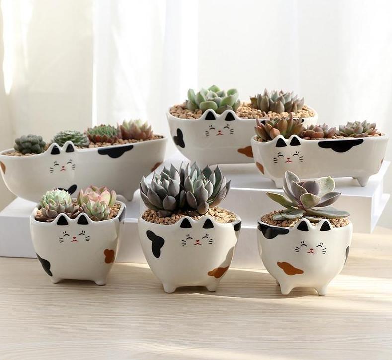 Cartoon Cat Succulents Pots Succulent Pots Flower Decorations Ceramic Flowers