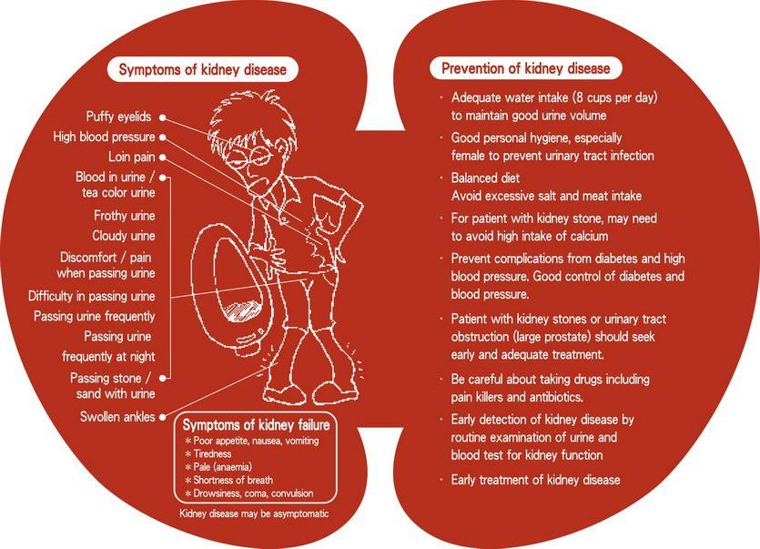 Gula Penyebab Buah Pinggang Rosak Kidney Disease Kidney Disease Symptoms Kidney Failure Treatment