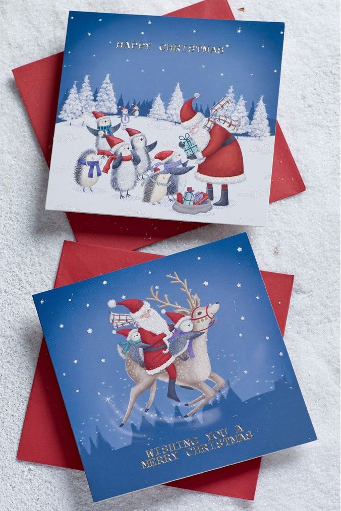 Next 20 Pack Charity Christmas Cards Blue Charity