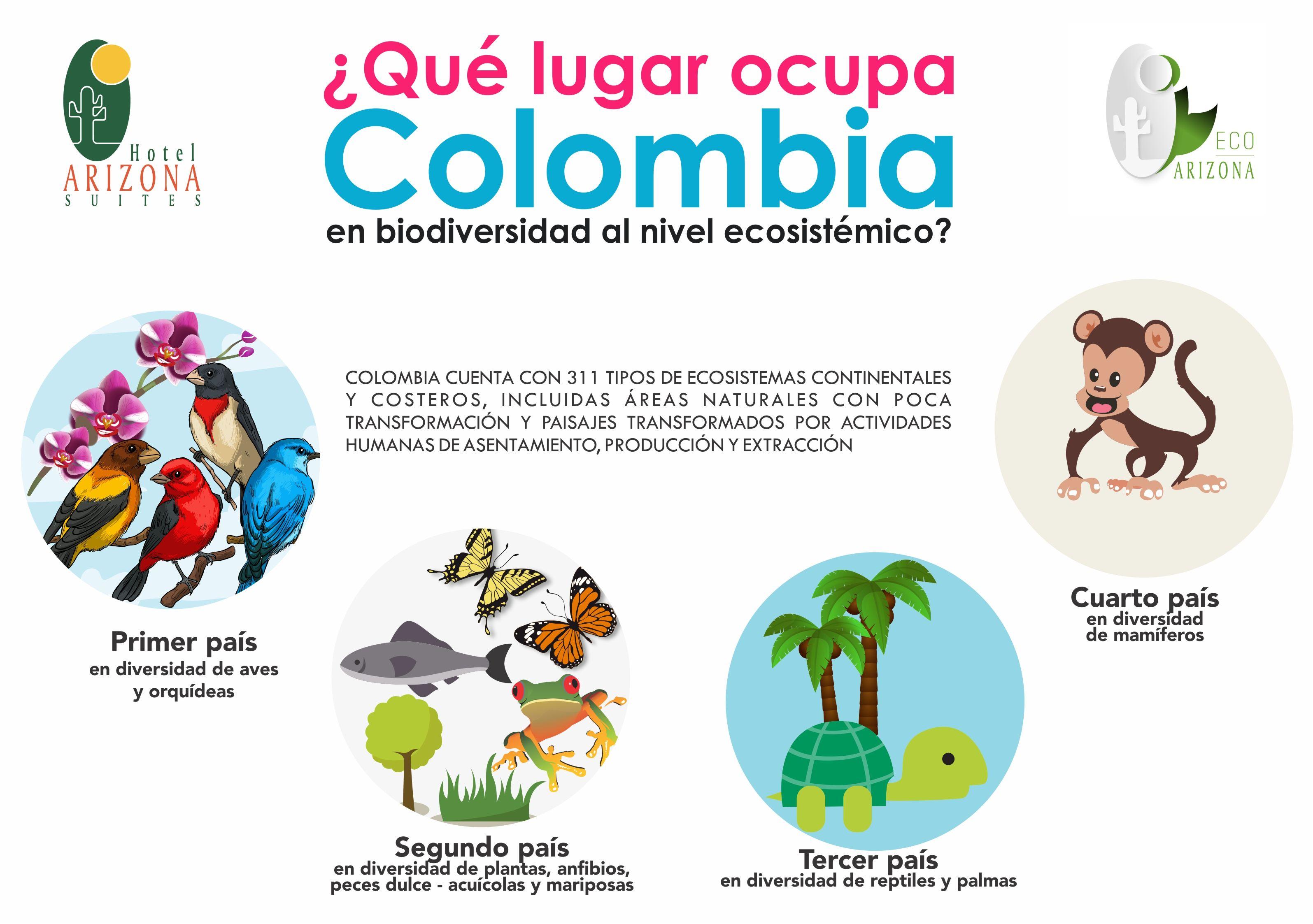 Que Lugar Ocupa Colombia En Biodiversidad Al Nivel Ecosistemico Biodiversidad Ecosistema Biodiversidad En Colombia Tipos De Ecosistemas Ecosistemas