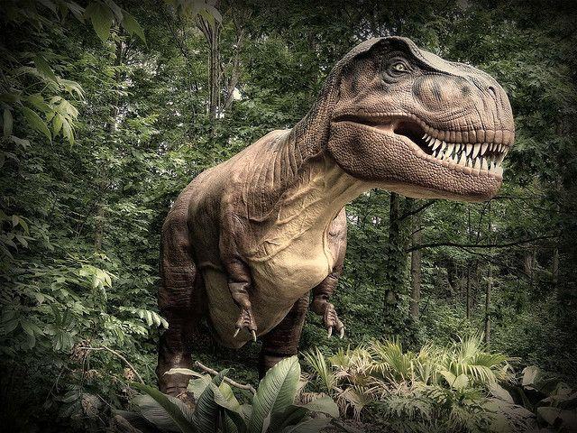 11 Prosauropods