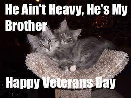 45fb4d0cb8da3e0128155568e875660c happy veterans day memes veterans day quotes pinterest memes