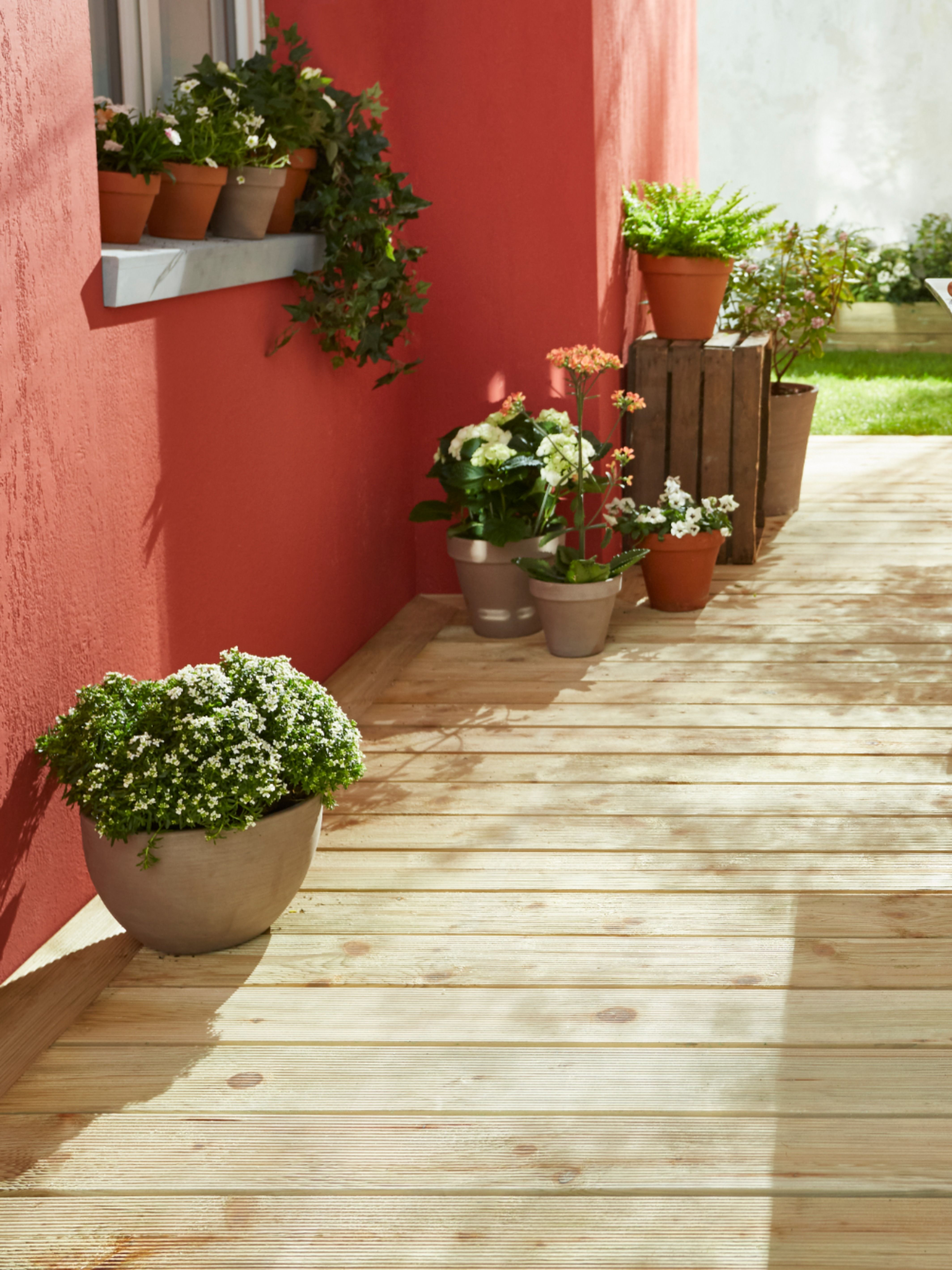Sur Une Terrasse En Bois On Joue Le Contraste Avec Un Mur Terracotta L Astuce Deco L Accumulation De Pots De Fleurs A En 2020 Lame Terrasse Castorama Pot De Fleurs
