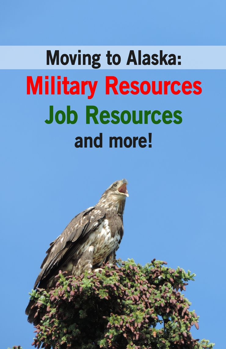 Military Moving To Jber Eielson Fort Greely Alaska Finding A Job In