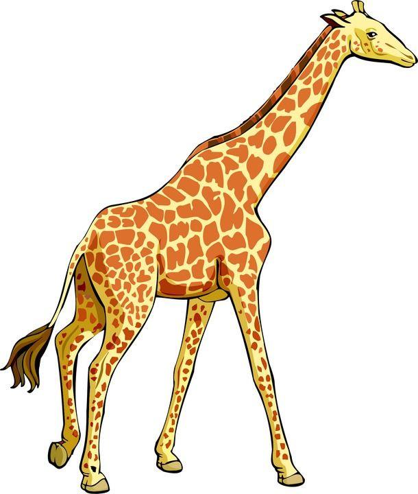 Giraffe Clipart Animals Clip Art Giraffe Clip Art