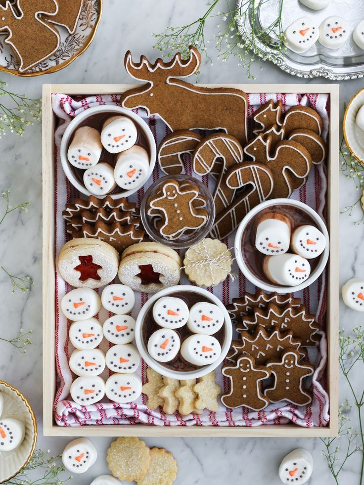 Speculoos Cookies & Hot Cocoa