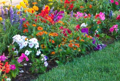 Charming Flower Garden Bed Designs Ideas Layouts And Pictures