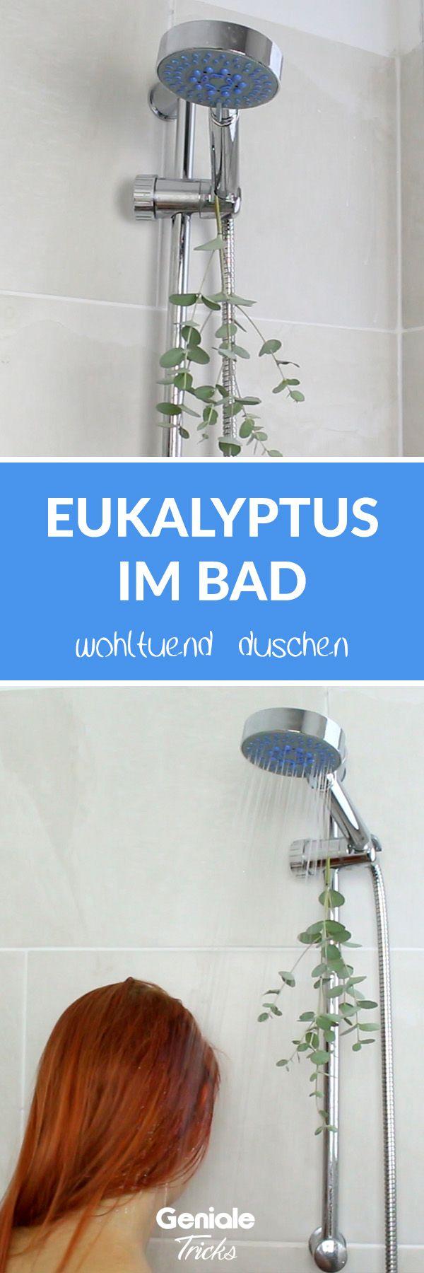 Gesunde Brause So Steigert Eukalyptus In Der Dusche Dein