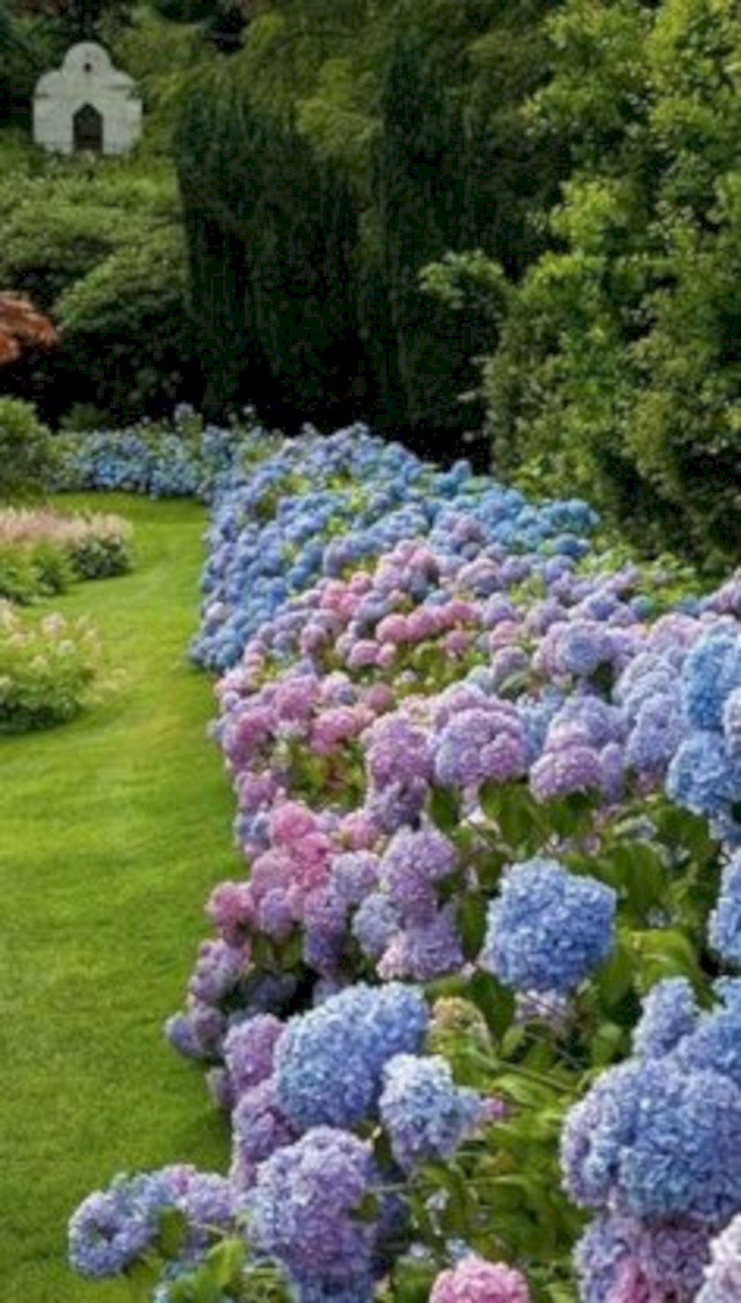 22 Fantastic Flower Beds Design Ideas For Backyard Inspiration Hydrangea Garden Garden Shrubs