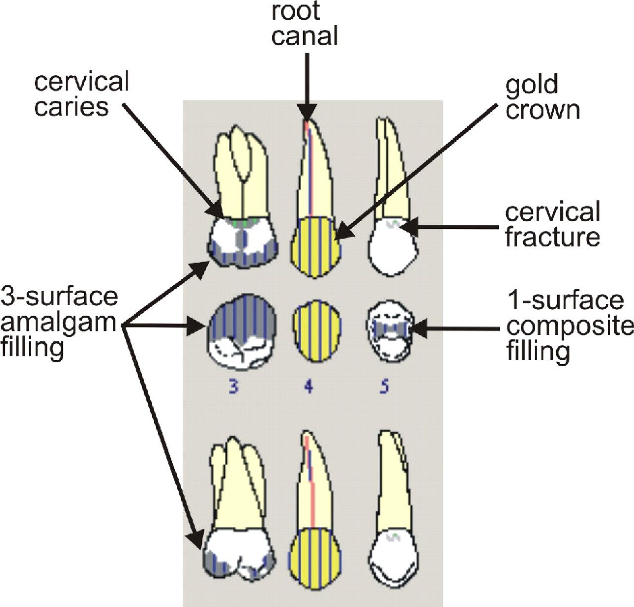 Medical charting symbols qualitative investigation of the content dental paper based and also rh pinterest