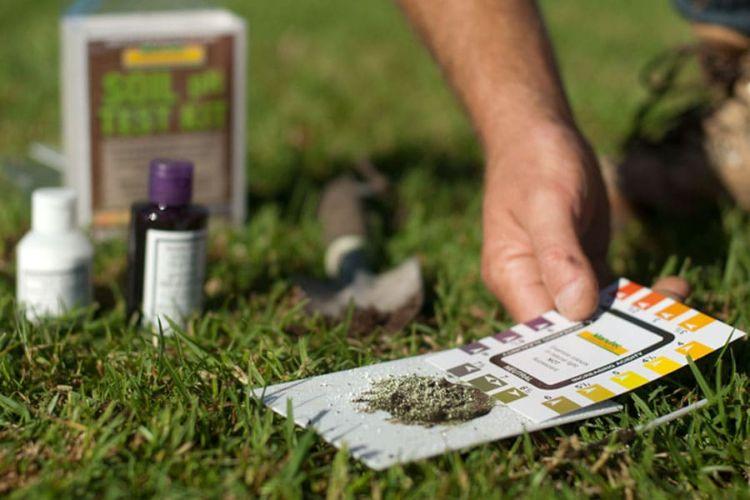 Awesome Bodentest Ph Wert Rasen Bestimmen Check More At Http
