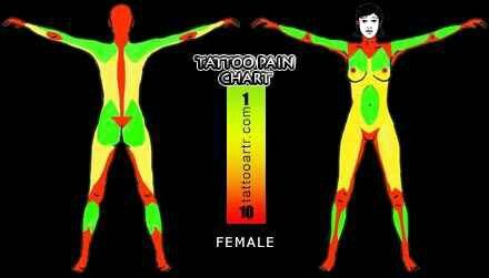 Female tattoo pain chart also pinterest rh