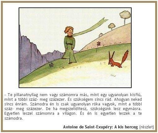 kis herceg idézetek barátságról Antoine de Saint Exupéry: A kis herceg | The little prince