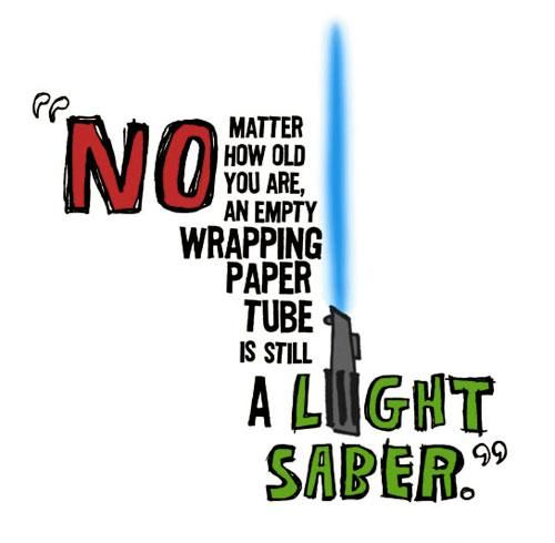 Star Wars is part of our culture now, so much so, that no matter how old you are, an empty wrapping paper tube is still a Light Saber!  Great supply management means you will always have a steady supply of paper tubes nearby, because you never know when you're going to need a Light Saber.  (Image: Very Hilarious)