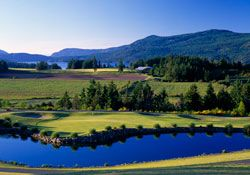 15+ Arbutus golf course cobble hill ideas in 2021
