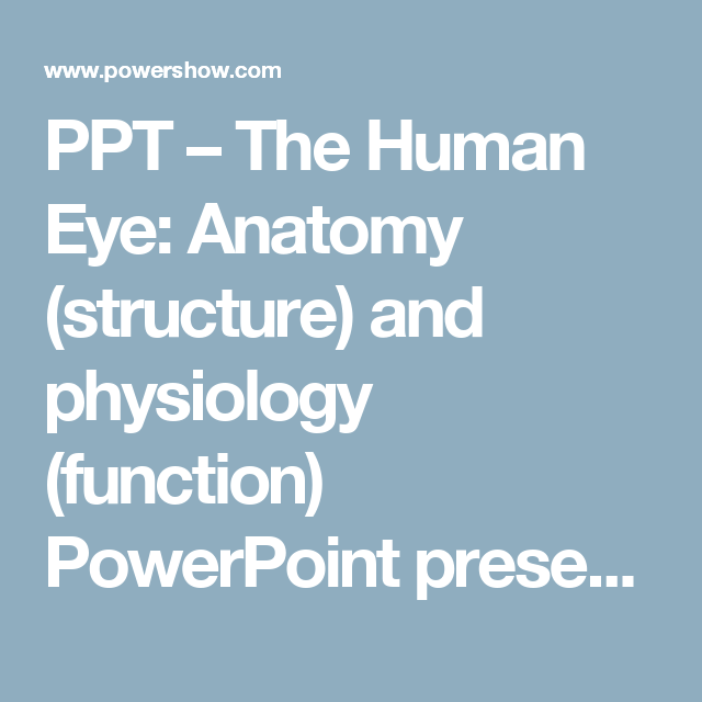 PPT – The Human Eye: Anatomy (structure) and physiology (function ...