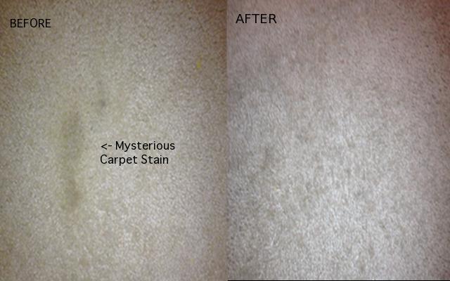 carpet-stains-homemakerchic